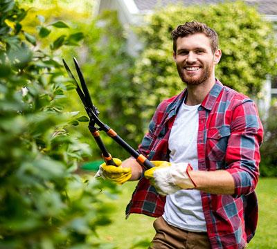 Aide au jardinage